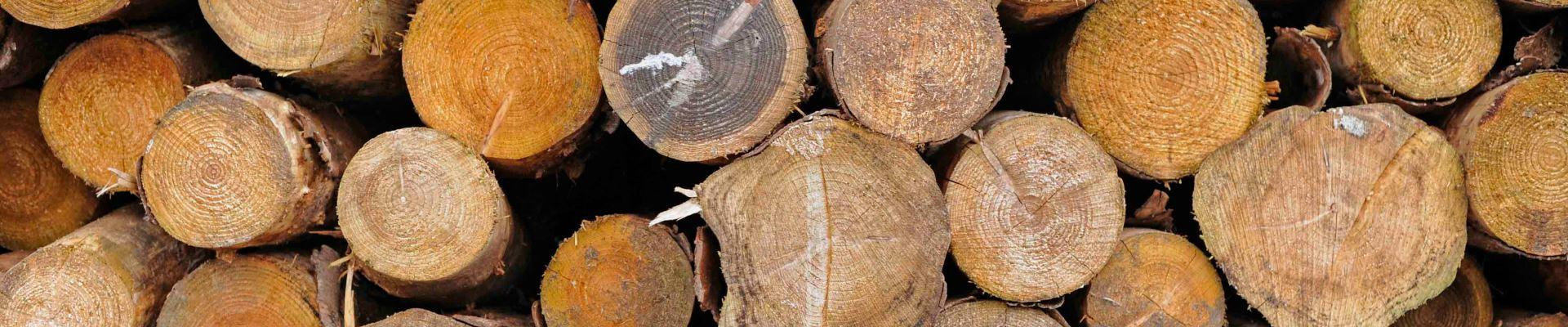 Eco Green Energy Log Boilers